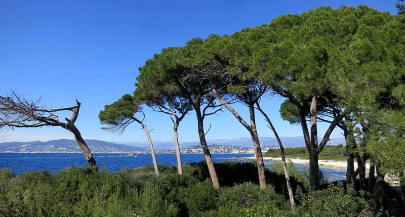 5 raisons de s\'évader sur l\'île Sainte-Marguerite - Blog lifestyle ...