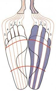 10zones_pieds