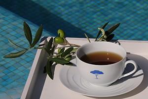 bluetree-massage-infusion300